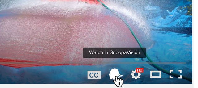watch videos in snoopavision