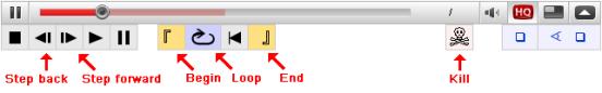 Youtube enhancer controls