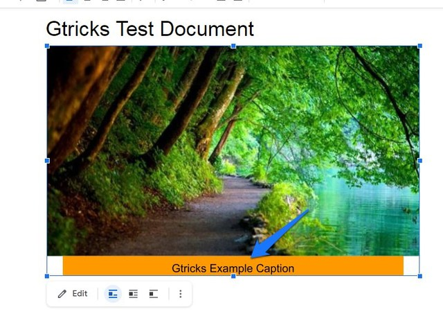 Caption added to Google Docs image