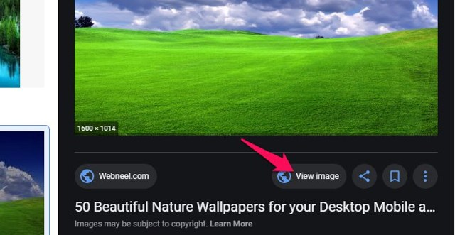 View Image for Google Images