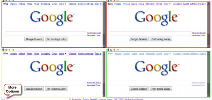 Google search single site